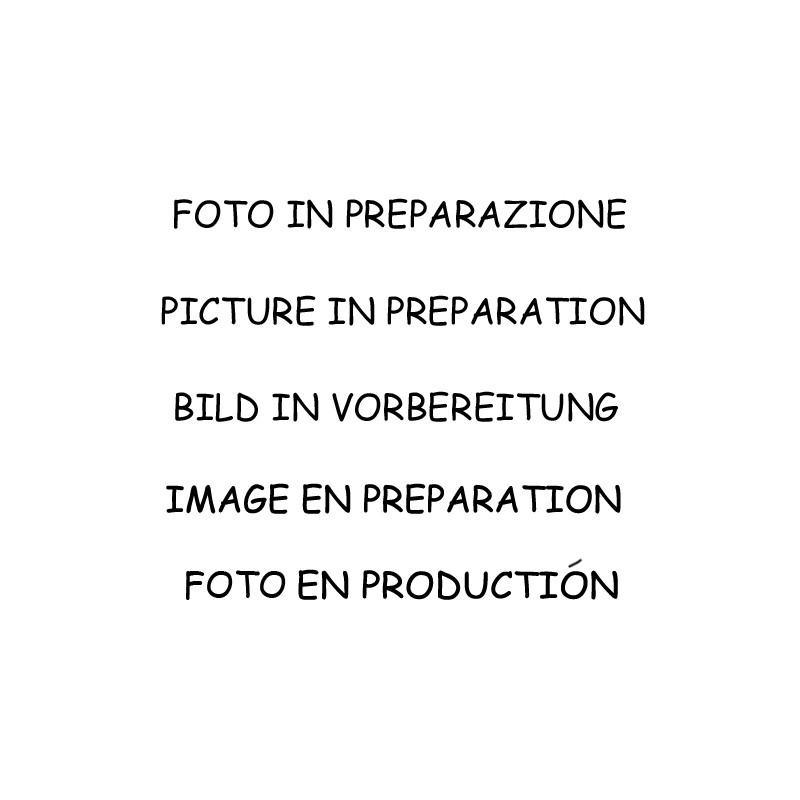 Silencieux d'échappement Groupe N arrière Inox Alfa Romeo 75 2.0 i 145cv Twin Spark 1985 - 1993 Rc Racing